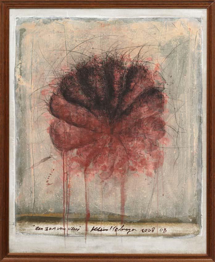 Nr 822, 2008, 'Een roos van vlees'